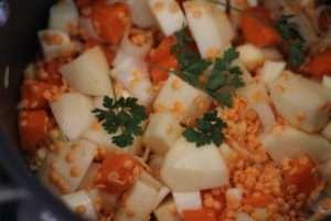Red-Lentil-Stew-mix-1-300x200